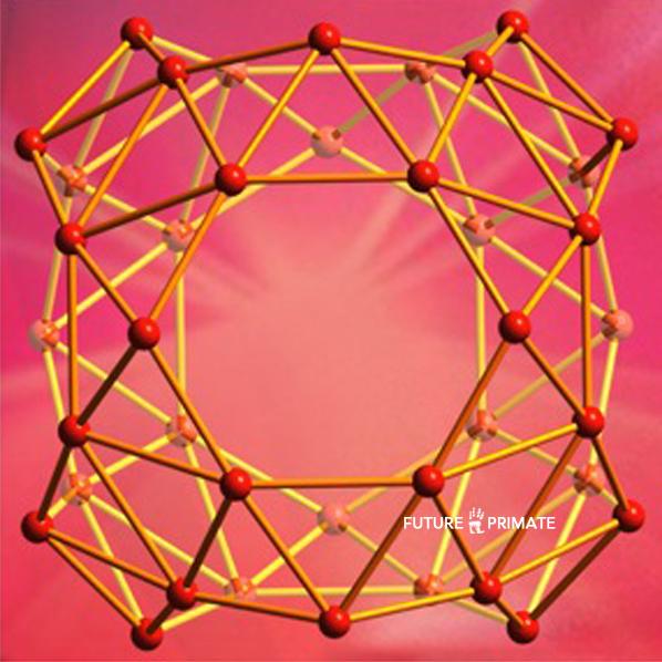 99-researchersd_futureprimate