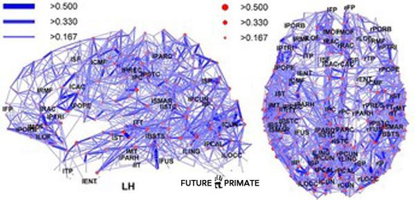 brainchips_futureprimate