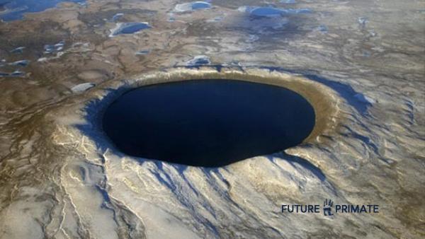 earthinearth_futureprimate
