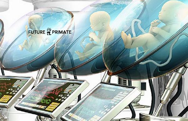 artificialwomb_futureprimate