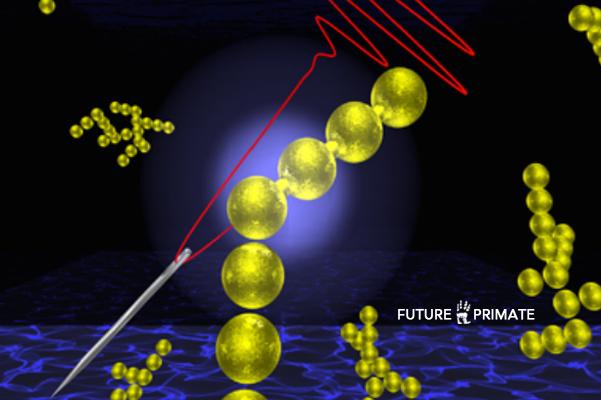 invisiblenanoparticles_futureprimate