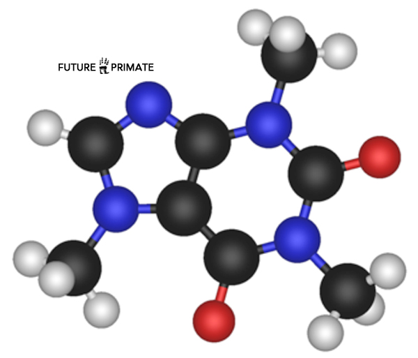 nanoscale-electronics_futureprimate