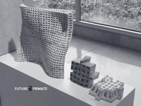PolyBrick_FuturePrimate