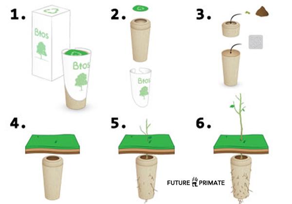 treegrave_futureprimate