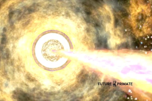 firststar_futureprimate