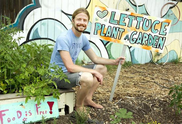 lettuce-plant-a-garden
